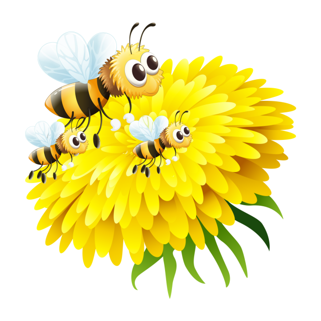 Clipart bee flower. In honey png and