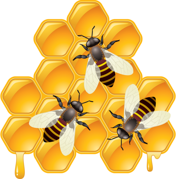 ees imprimibles pinterest. Honeycomb clipart honey drip