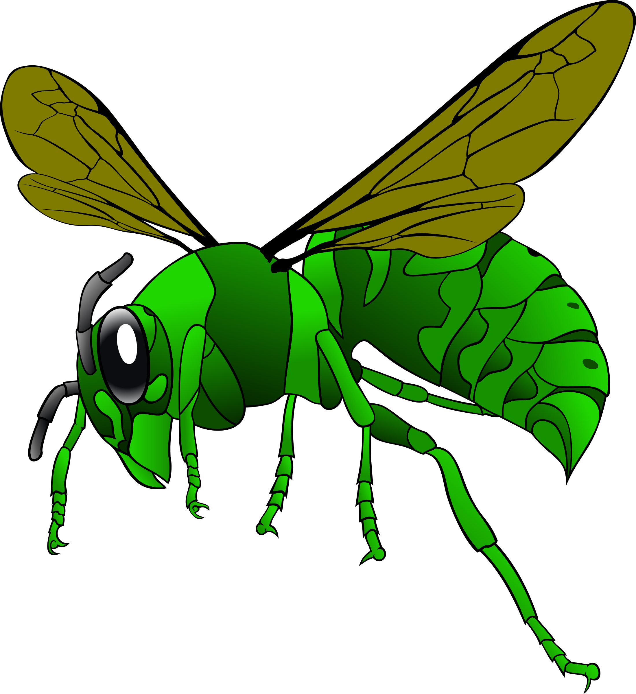 Insects clipart green insect. Hornet big image png