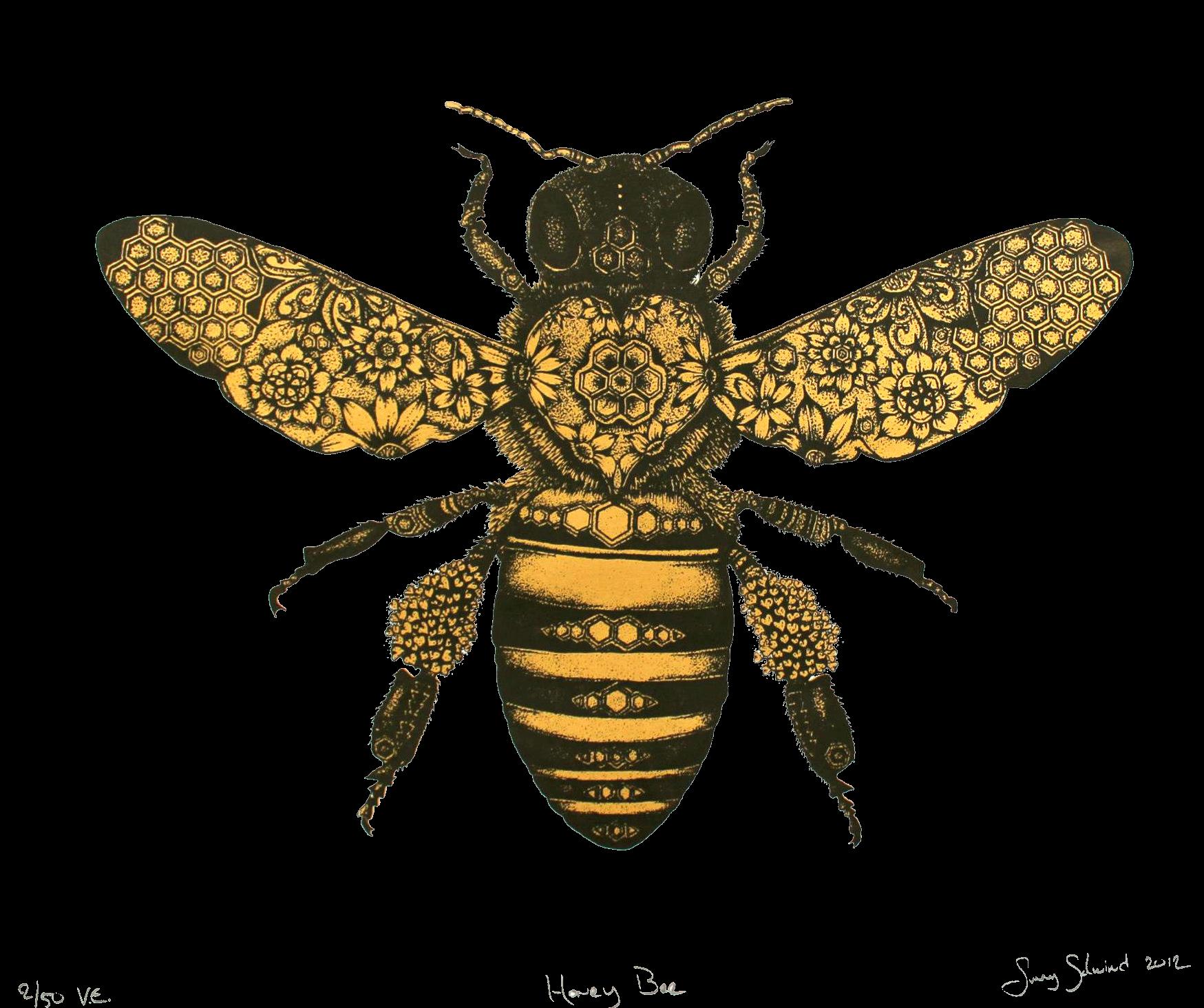Honeybee honey clipartfest transparent. Clipart bee vintage