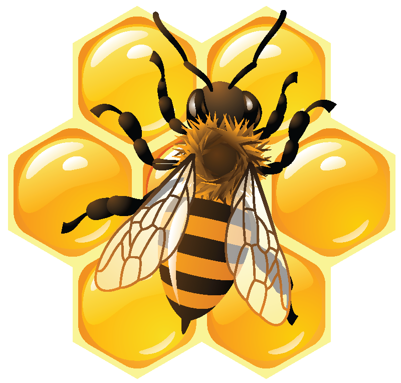 Click to close image. Honeycomb clipart bee pollination