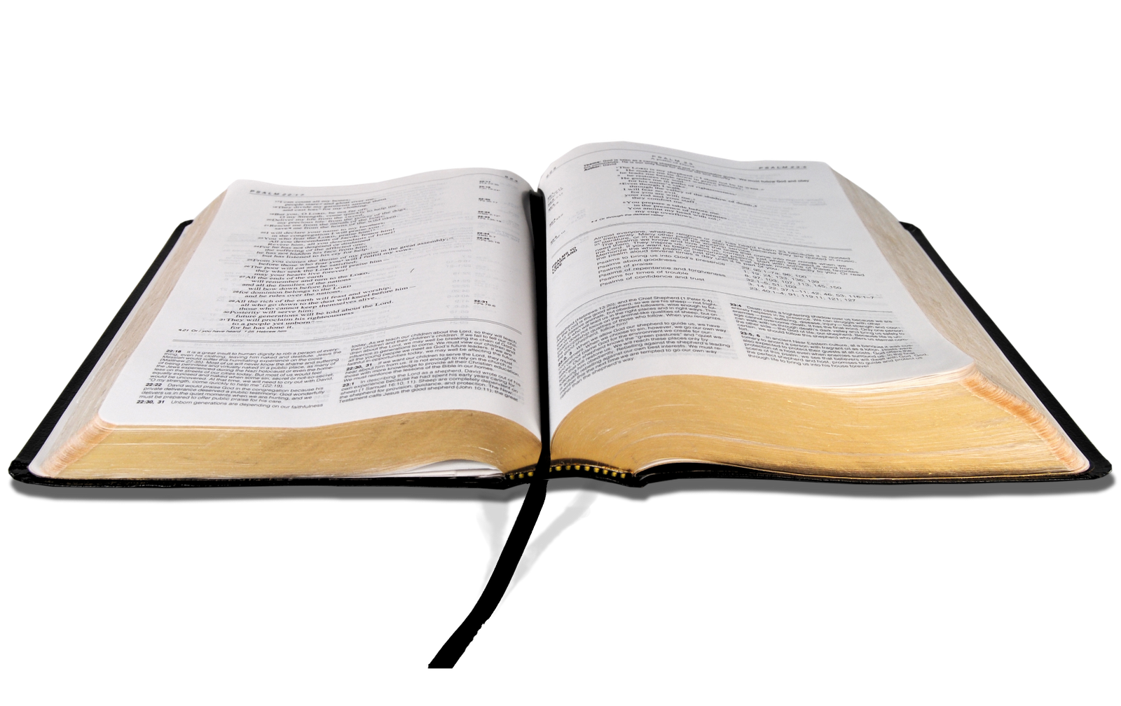 Bible png images. Use these vector clipart
