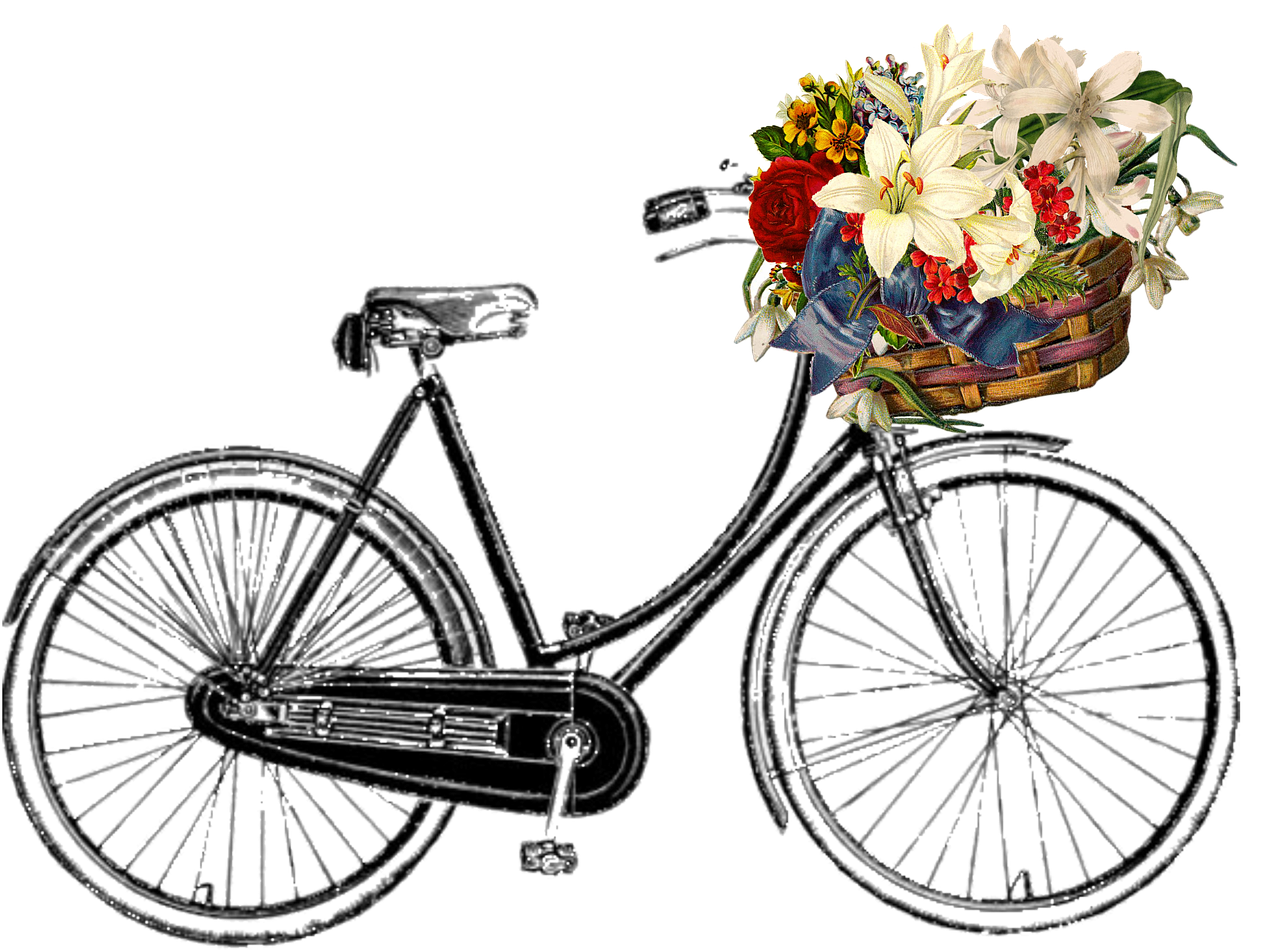 Free image on pixabay. Clipart bicycle hipster