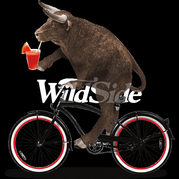 Clipart bike beach cruiser. Bull riding the wild