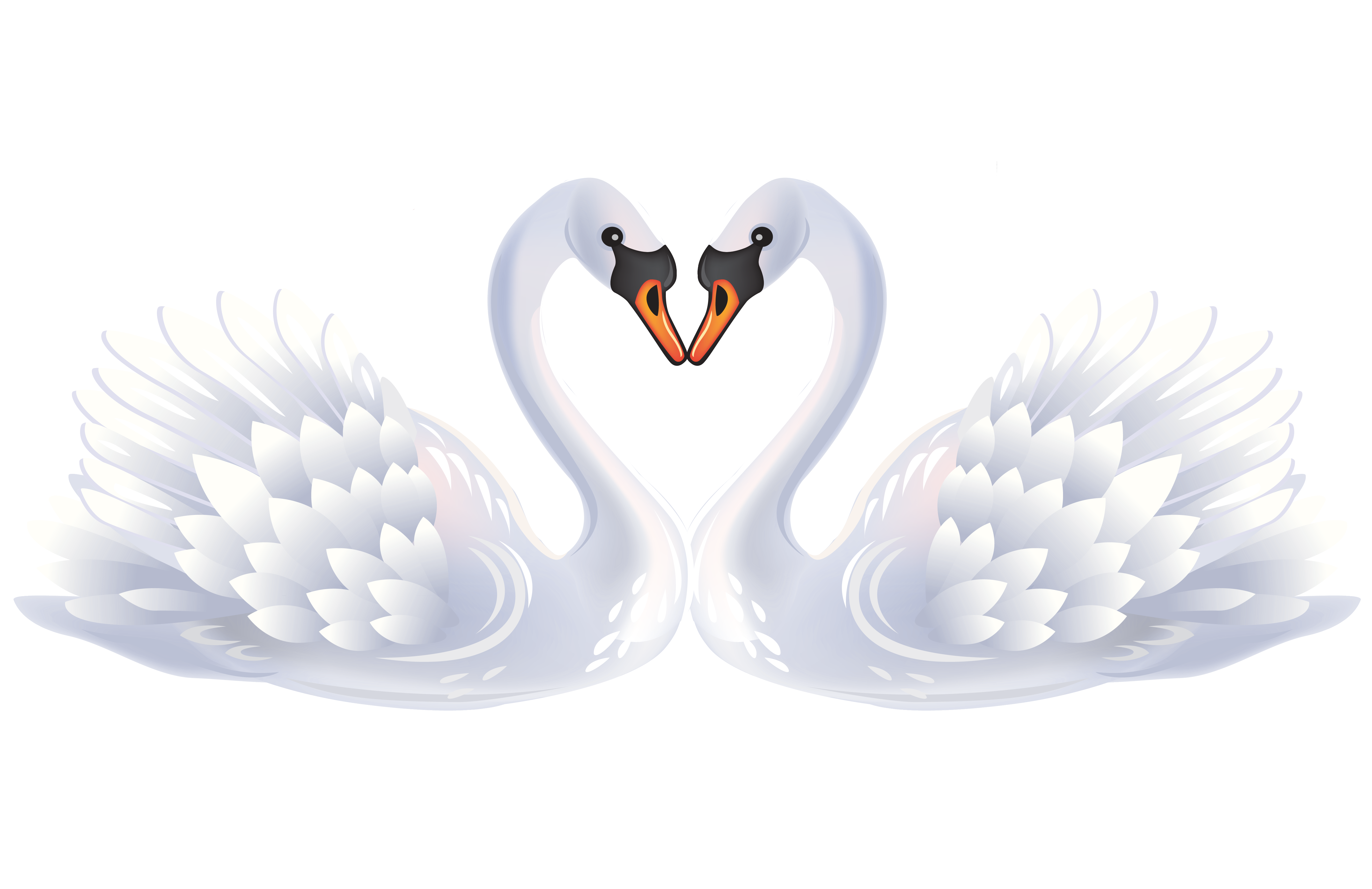 Bird clip art white. Clipart birds black swan