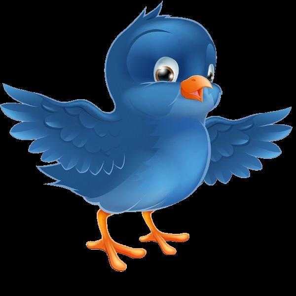 Clipart birds paradise. Blue bird clip art