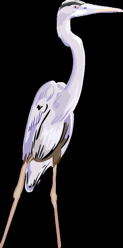 Great egret clip art. Crane clipart crane arm