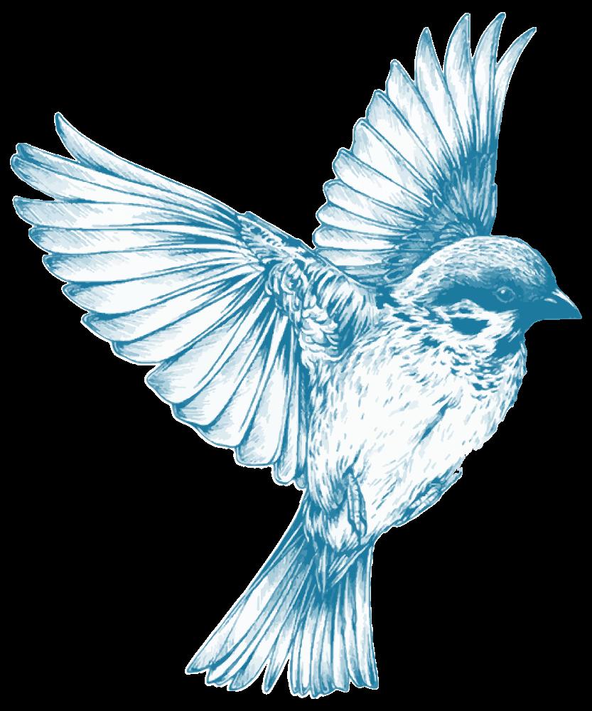 Clipart bird body. Onlinelabels clip art vintage