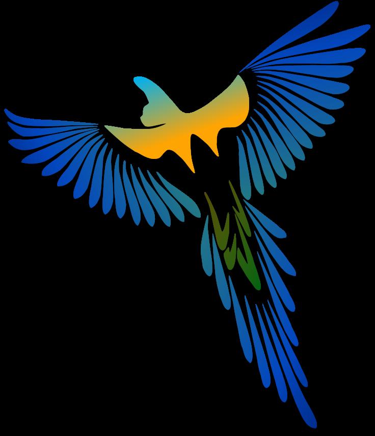 Birds illustrations art islamic. Parrot clipart guacamaya