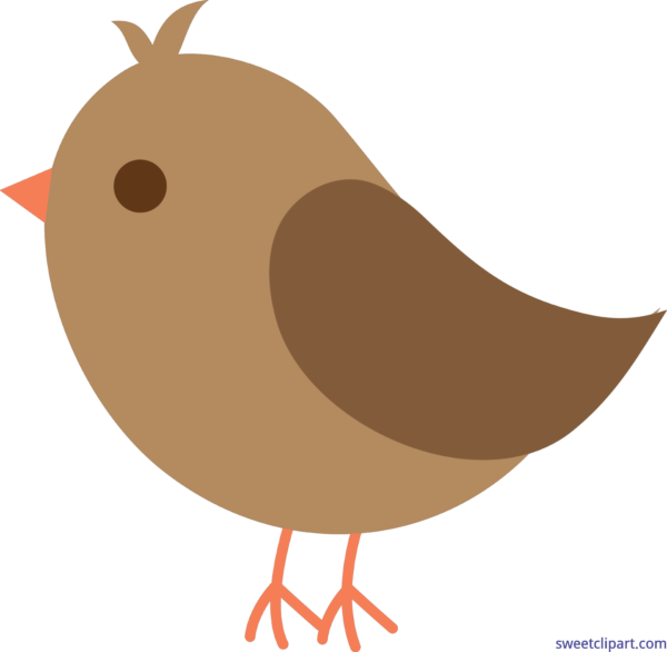 Liz author at sweet. Clipart birds bunch