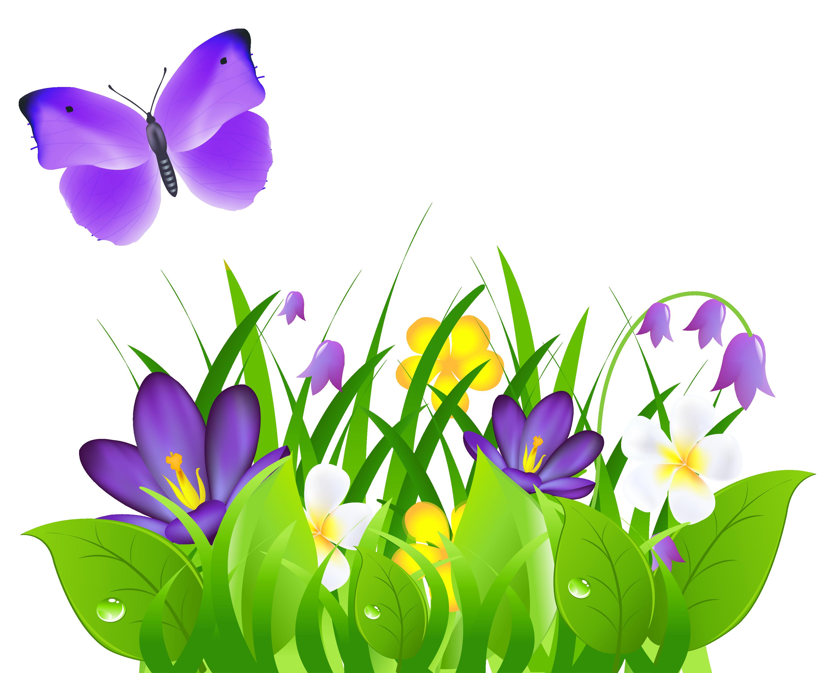 Spring time grass butterflies. Clipart flowers purple
