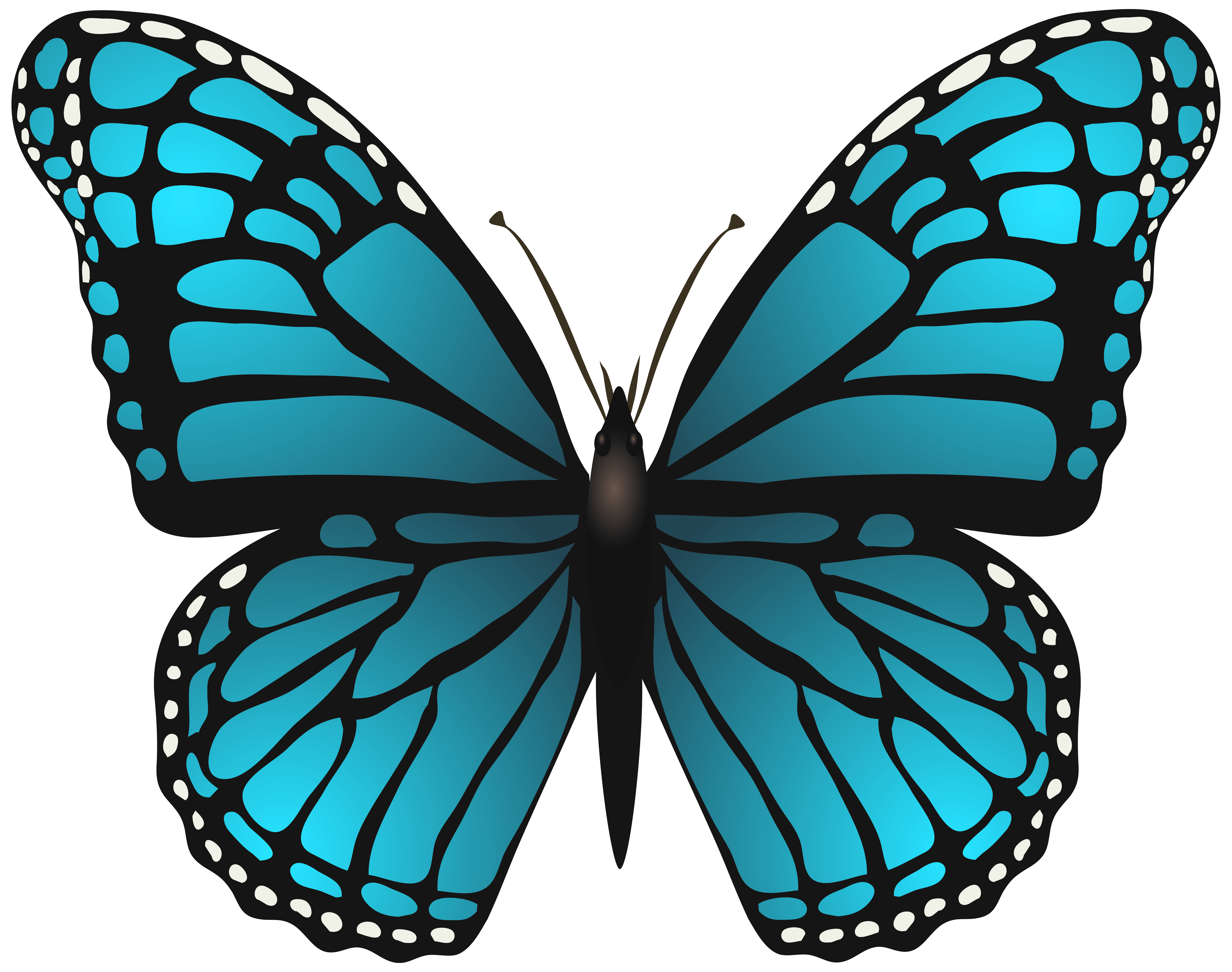 Hands clipart butterfly. Large blue png clip