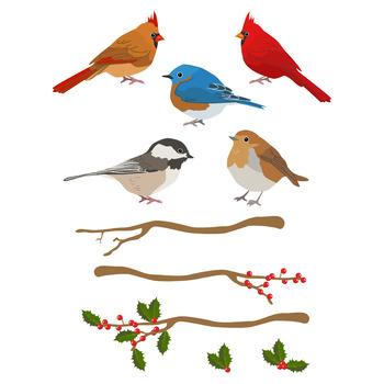 Winter clipart bird. Birds christmas holiday