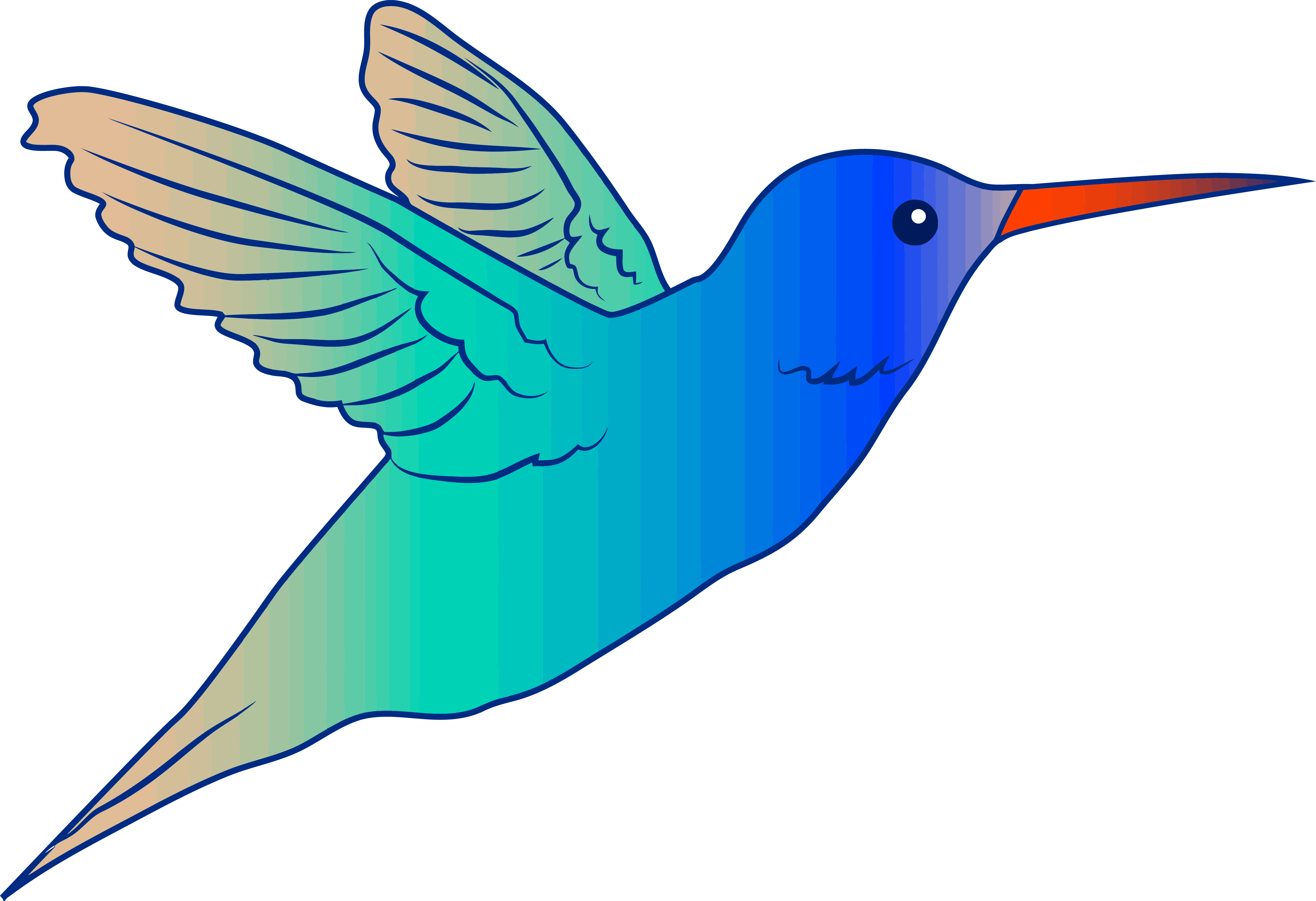 Flying clipart parrot. Cute bird hummingbird illustration