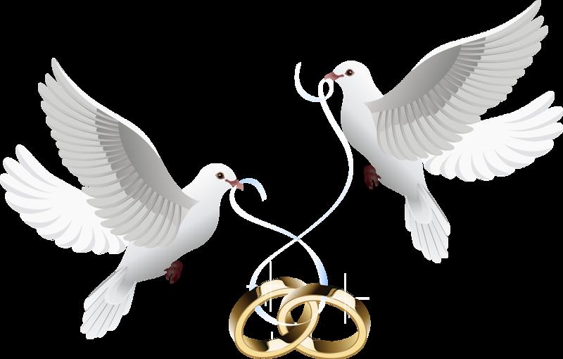 Marriage clipart dove. Wedding invitation clip art