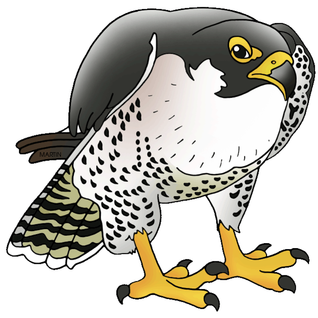 Falcon clipart falcon bird. Balloon hatenylo com peregrine