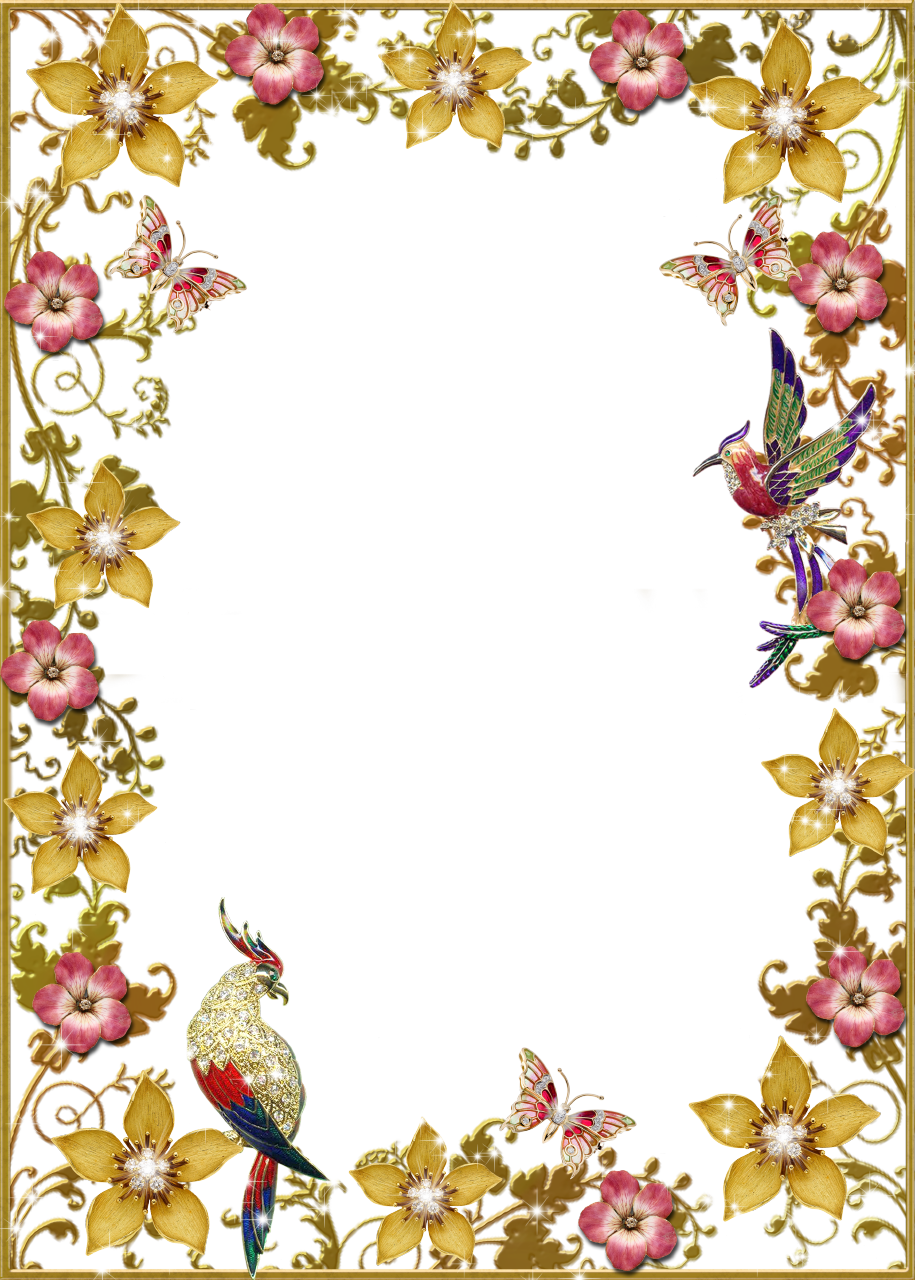 Flowers and butterflies floral. Clipart birds frame