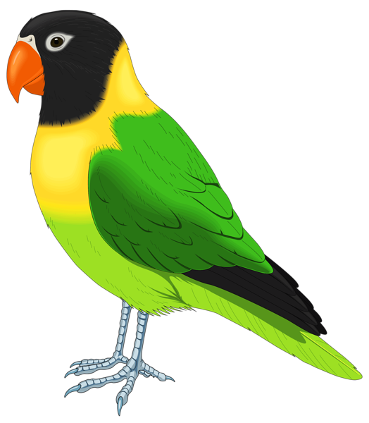 Clipart bird goldfinch. Gallery birds png