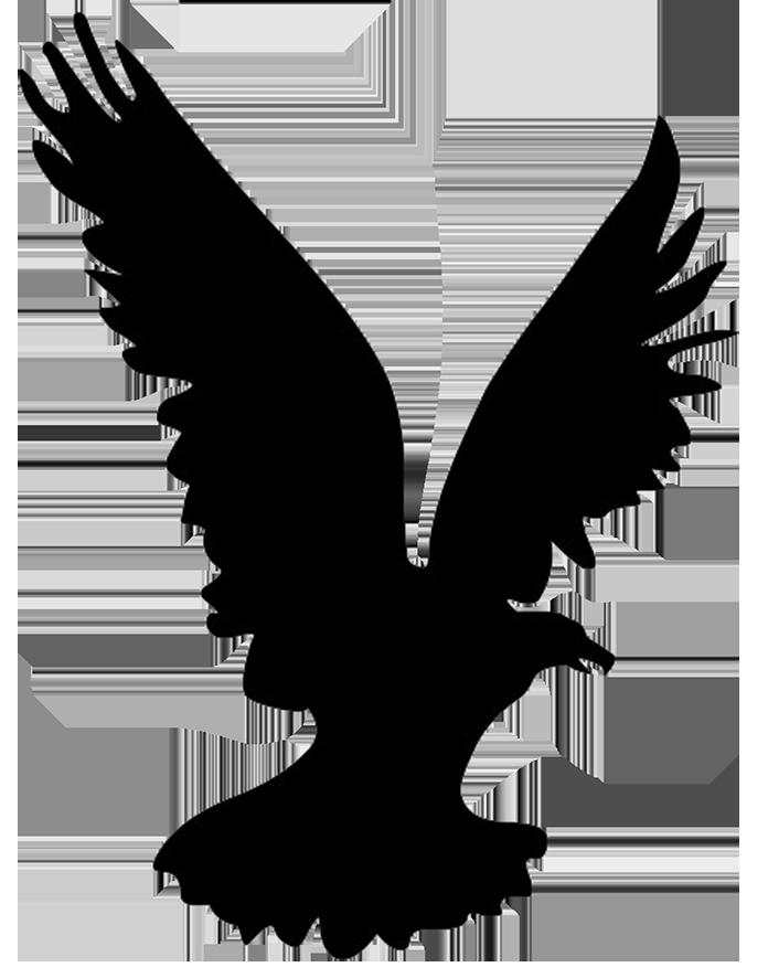 Clipart birds falcons. Hawk head silhouette at