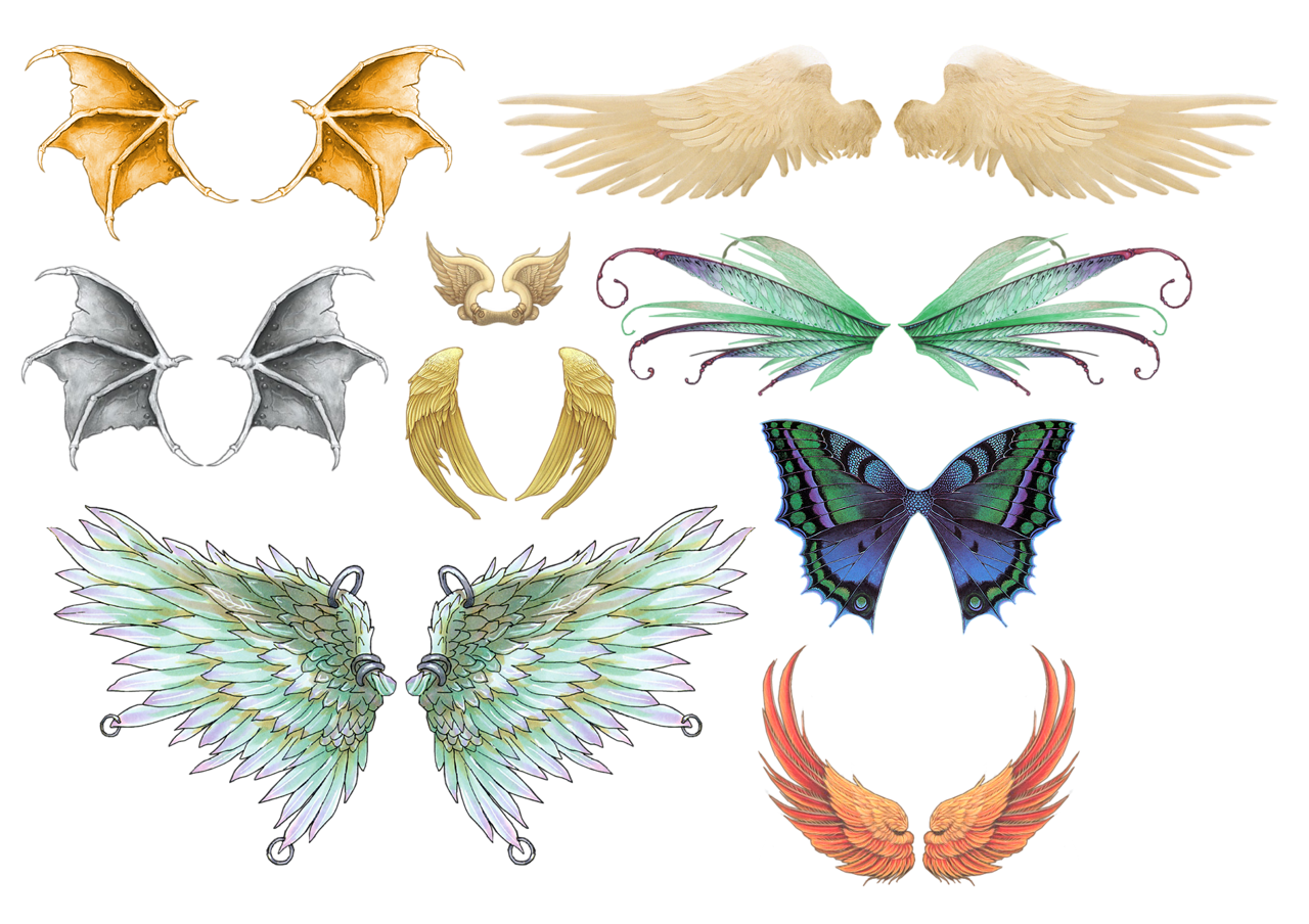 Clipart birds insect. Bird drawing clip art