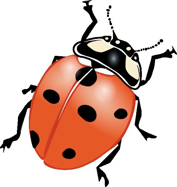 A ladybug vector pinterest. Ladybugs clipart cycle
