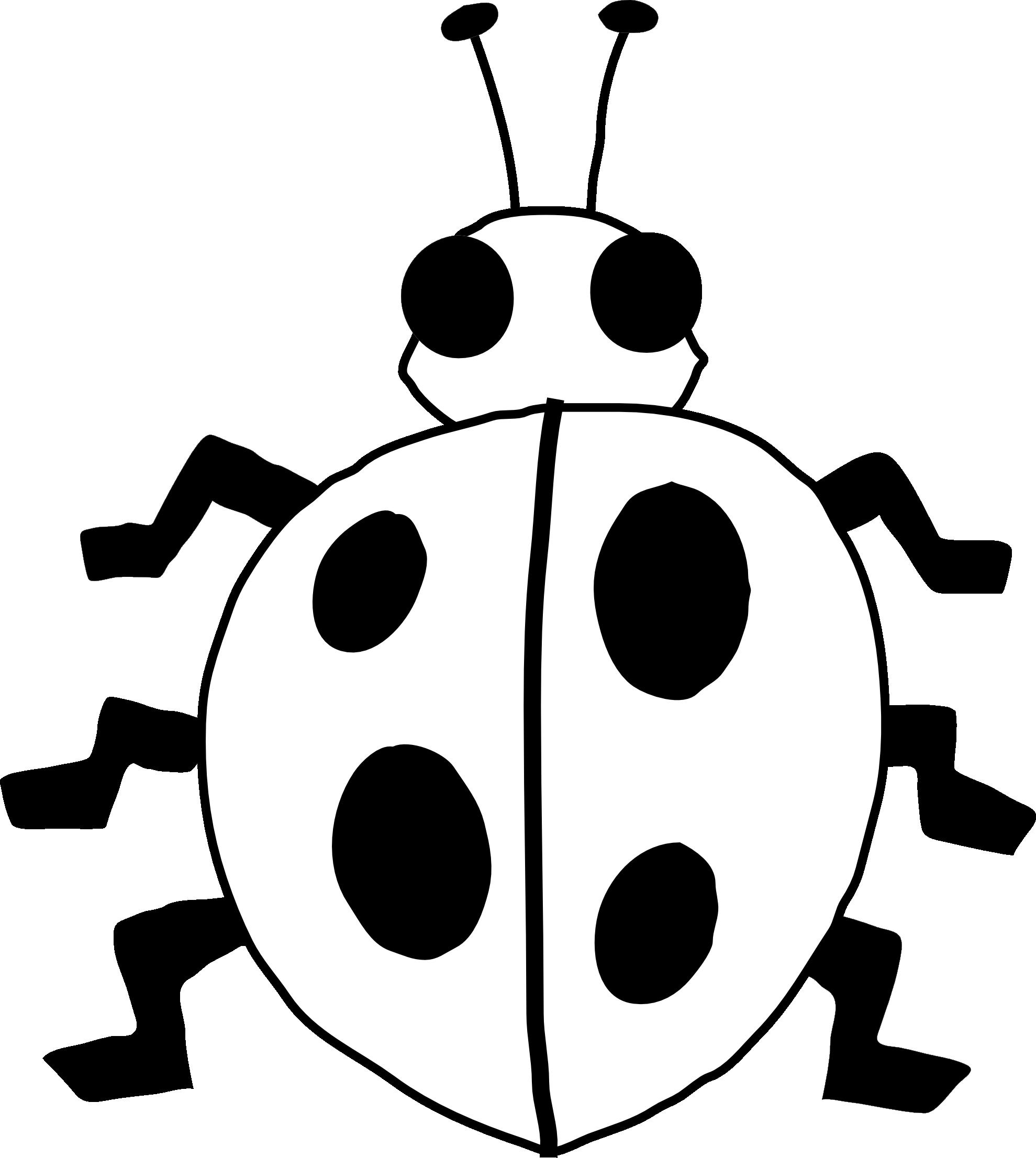 Ladybug clipart banner. Black and white panda