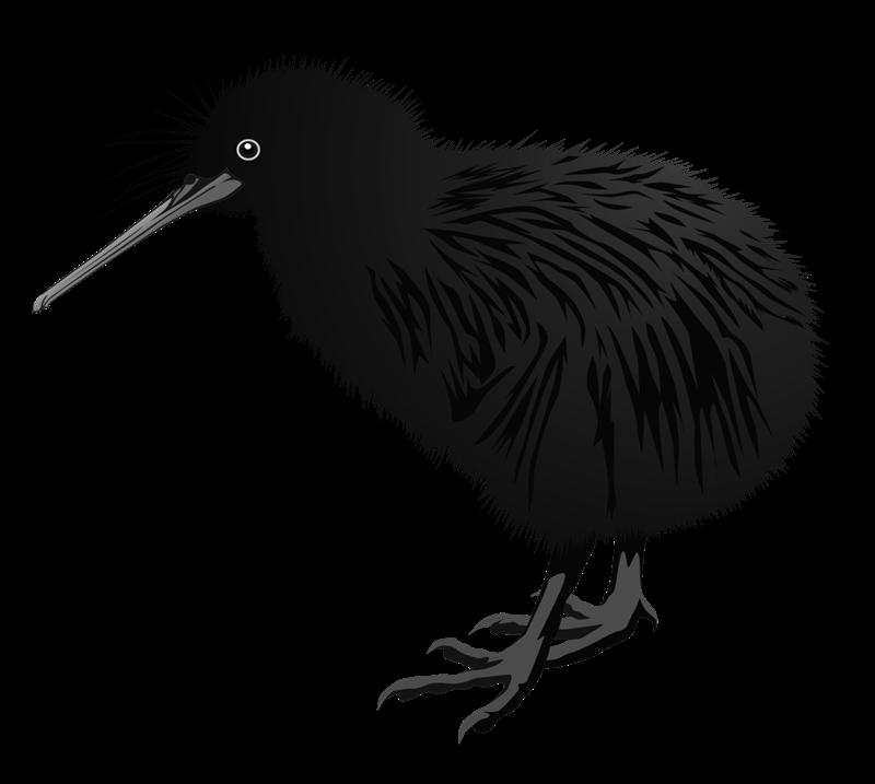 Bird clipartblack com animal. Clipart birds kiwi