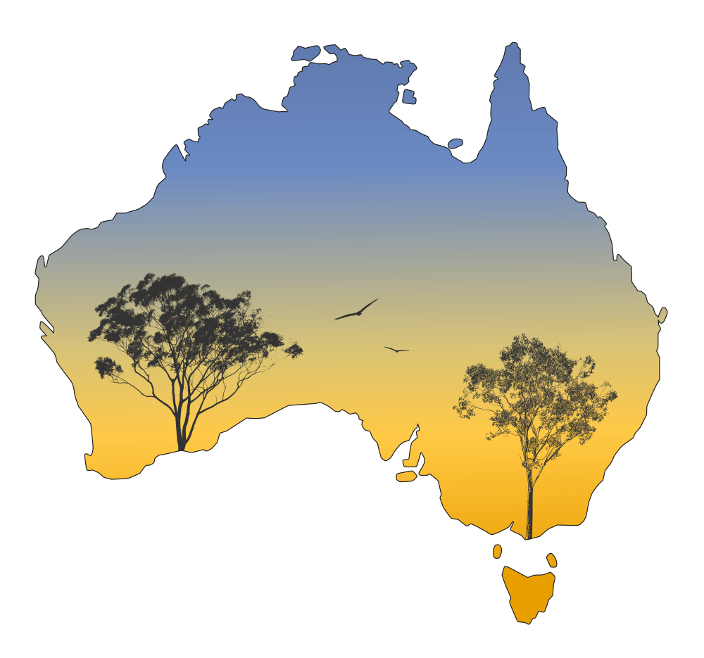 Australia landscape gum trees. Sunset clipart silhouette