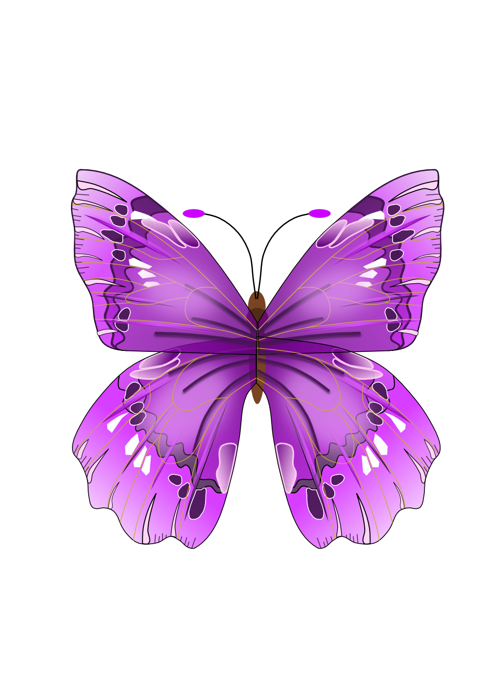 Purple june flowers clip. Clipart butterfly diamond