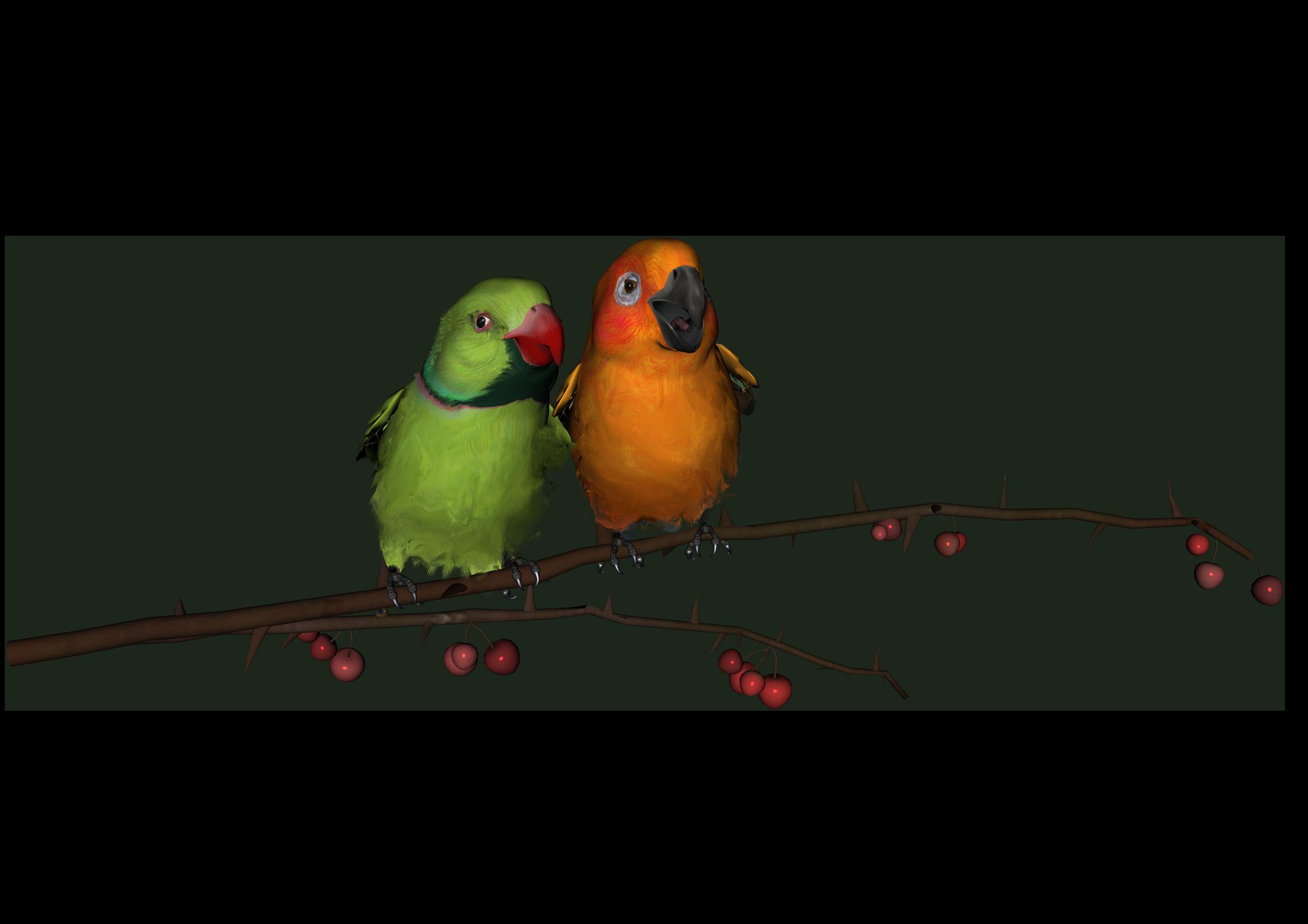 Love clipart love bird. Birds photos transparentpng