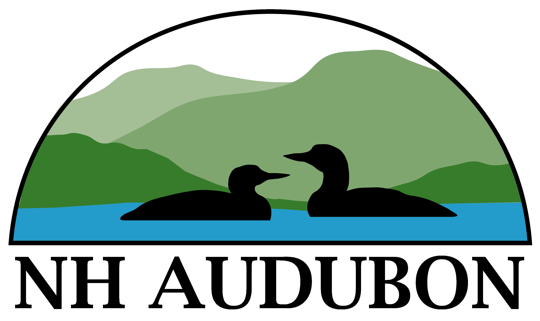 Clipart birds meadowlark. New hampshire ebird discover