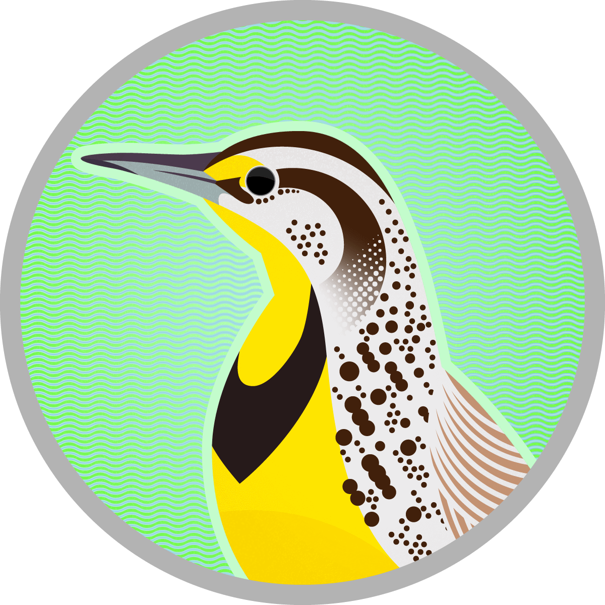 Of state western sturnella. Clipart birds meadowlark