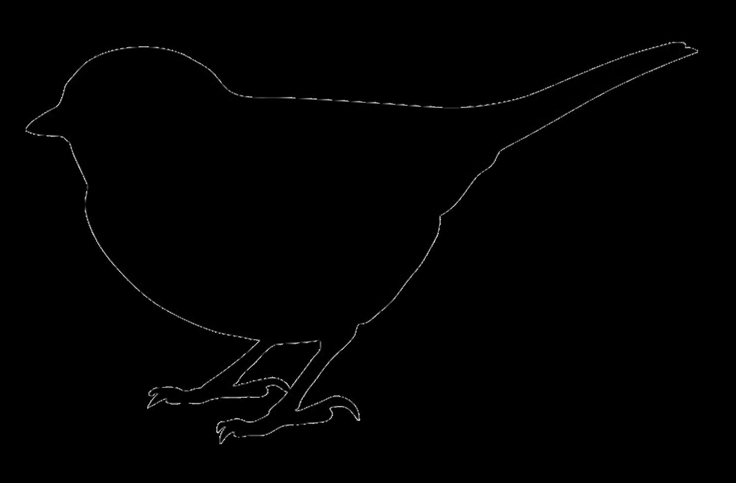 Mockingbird silhouette at getdrawings. Clipart bird mockingjay