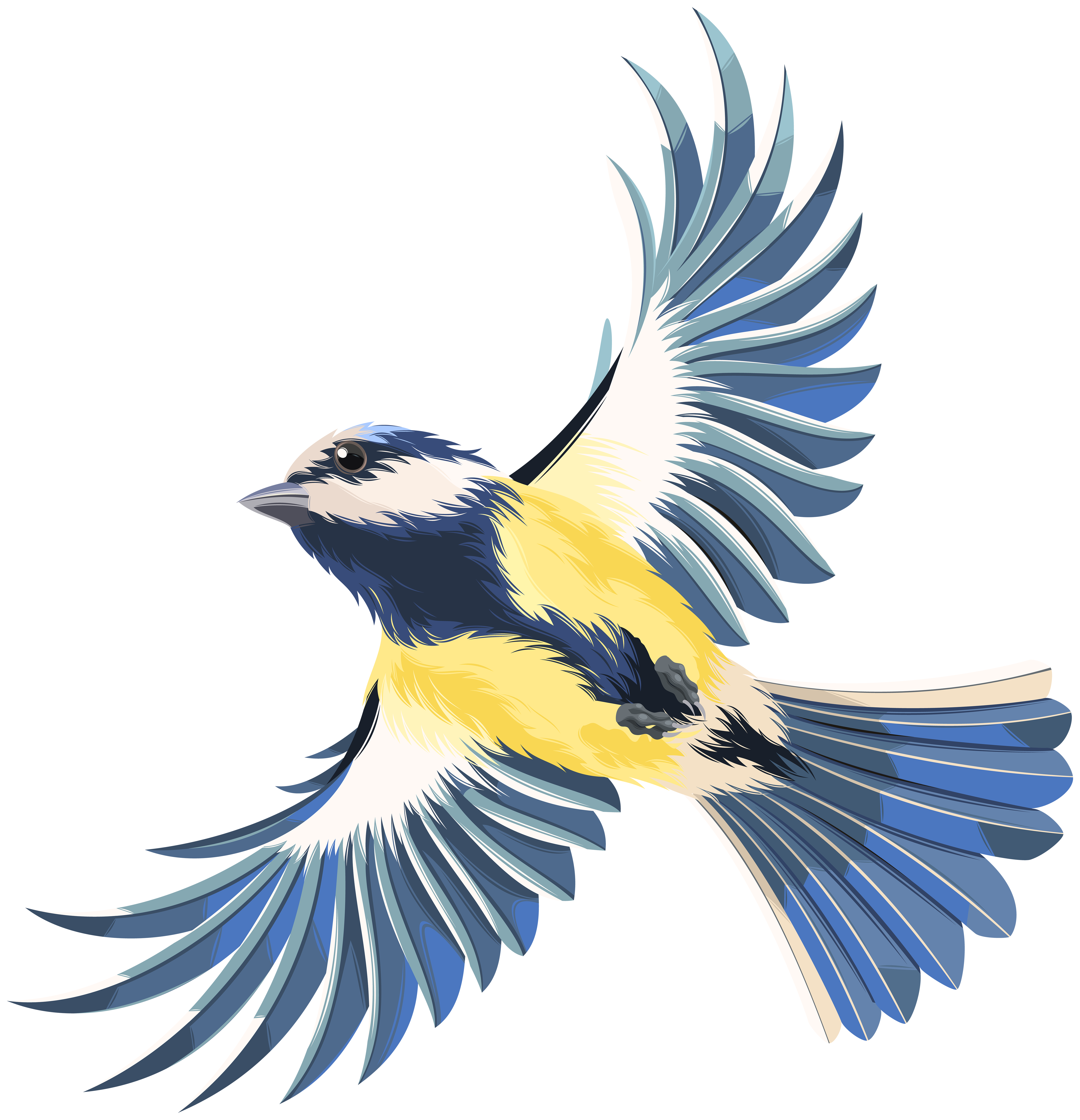 Fly clipart summer. Flying bird transparent png