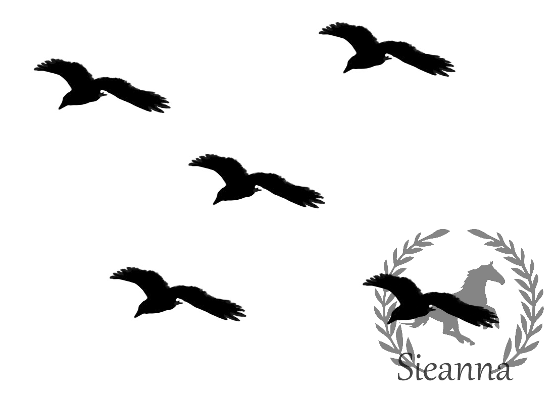 Silhouette of birds in. Fly clipart black and white