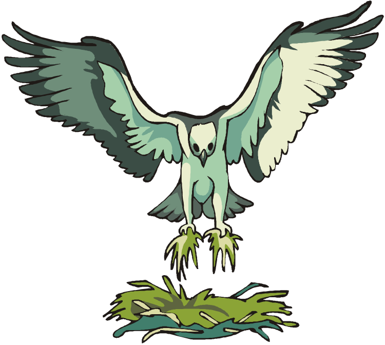 Bird clipart osprey - Pencil and in color bird clipart osprey