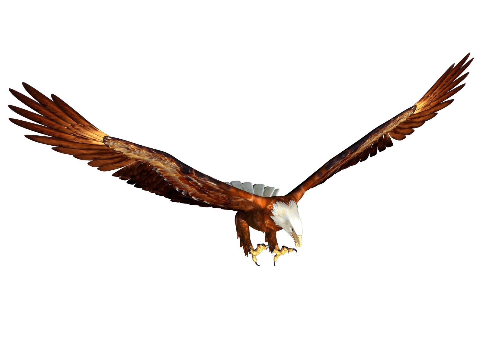 Snake clipart eagle. Animated bald hunting png
