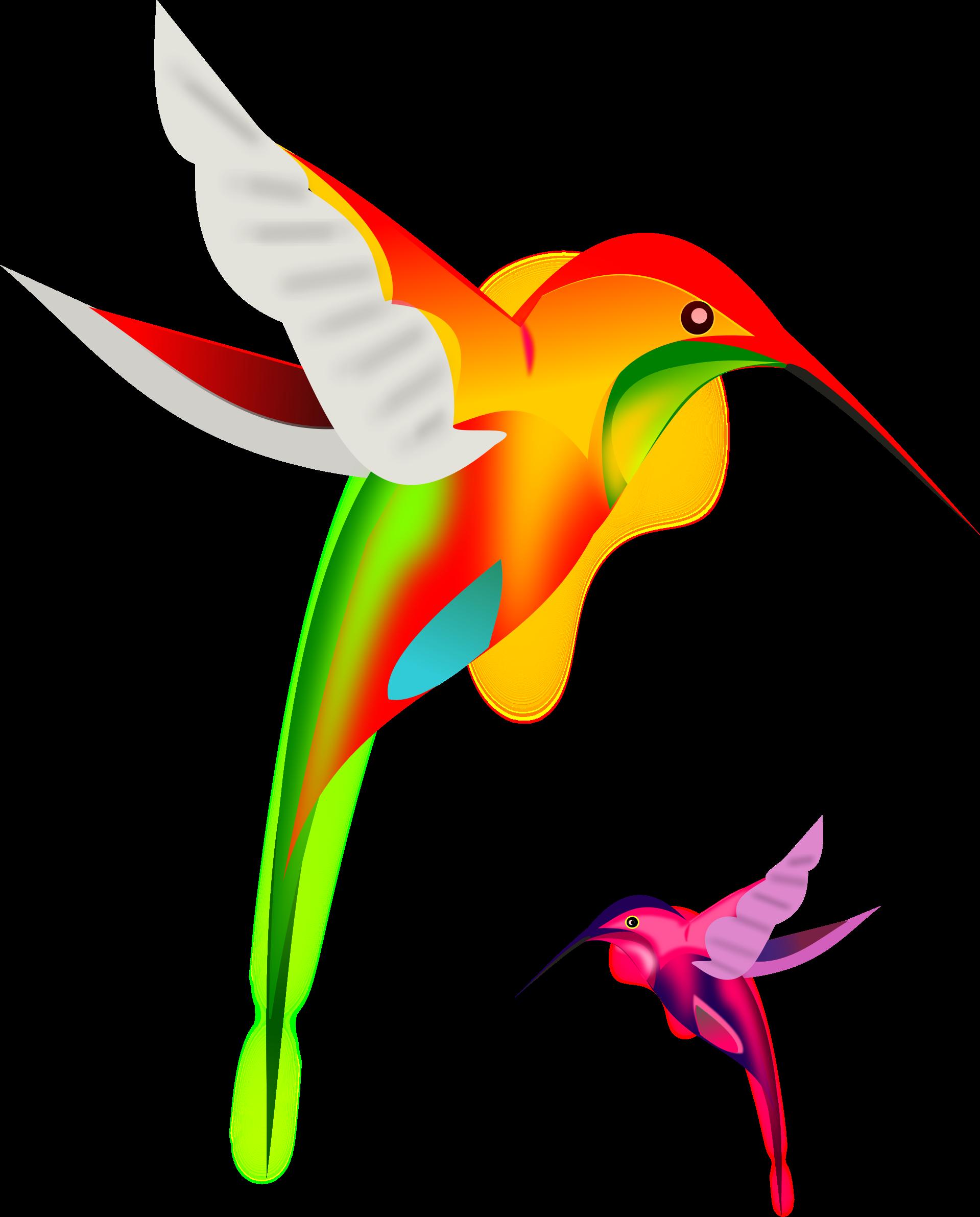 Clipart birds paradise. Colibri by gurica hummingbirds