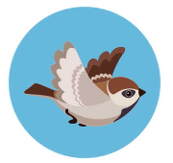 Clipart birds pipit. The john curwen cooperative