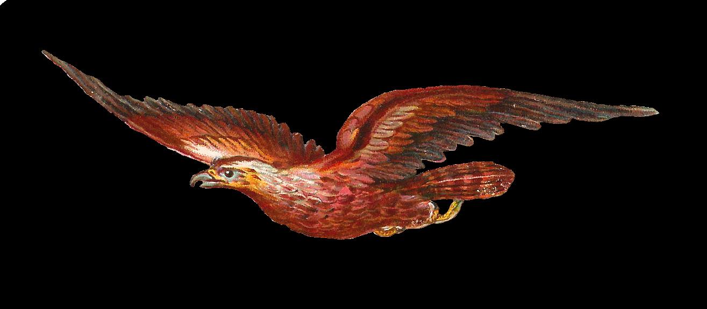 Clipart kite digital. Antique images bird of