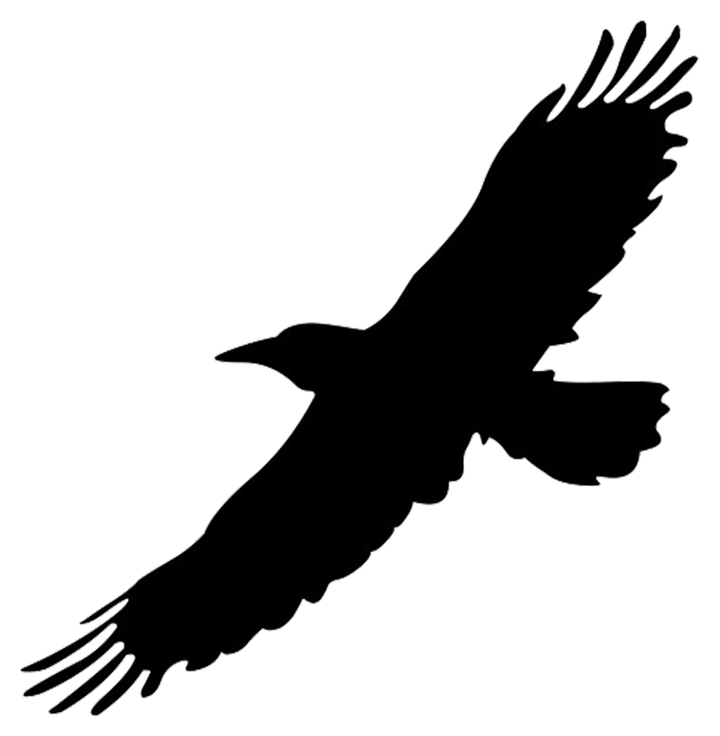 Parrot clipart silhouette. Flying hawk at getdrawings
