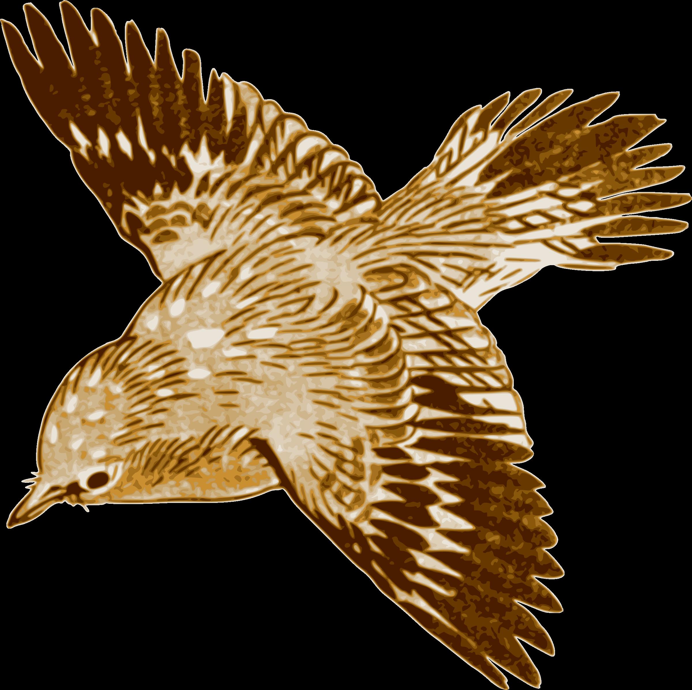 Bird big image png. Clipart birds red kite