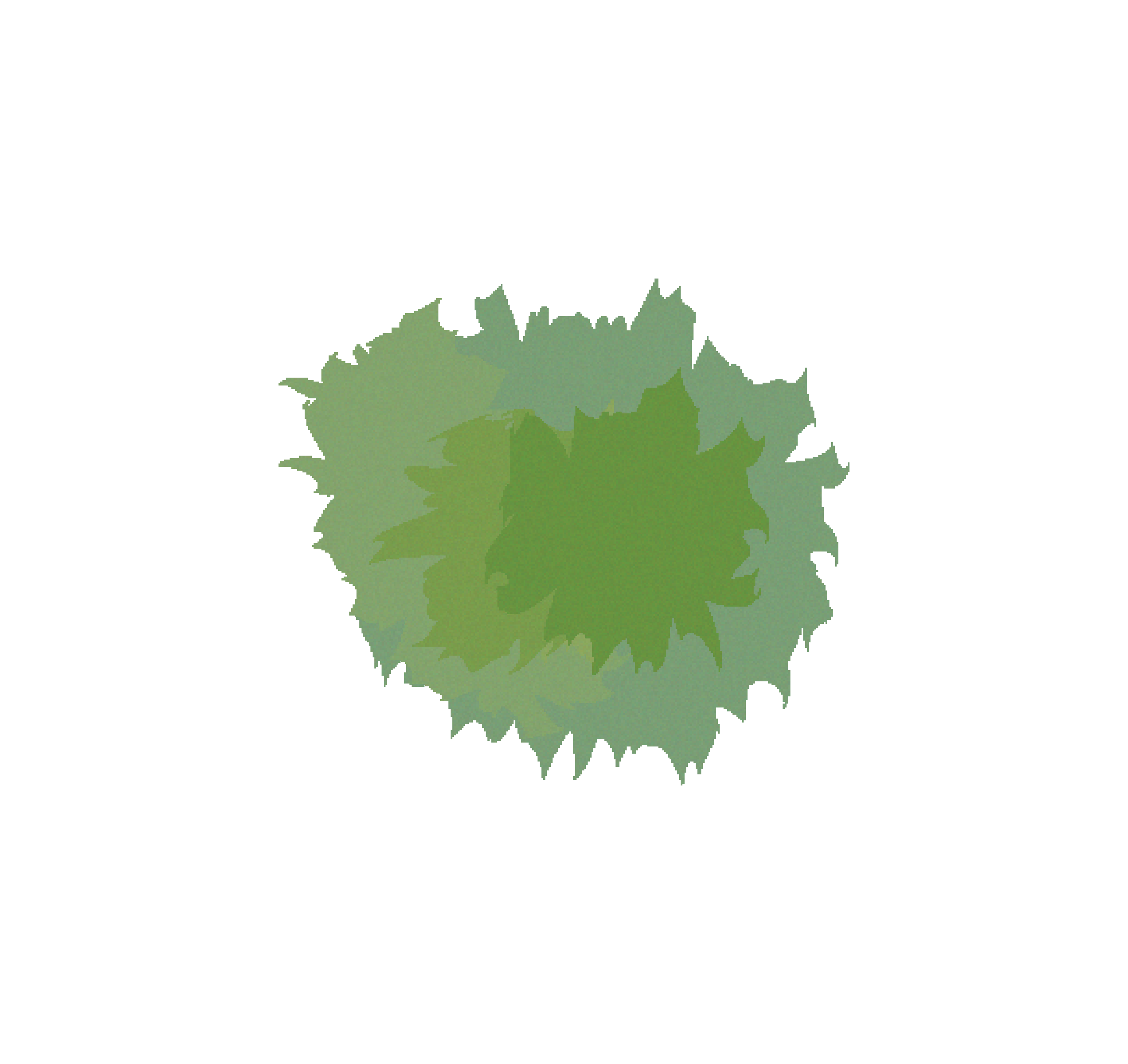 Clipart turtle eye. Tree free images at