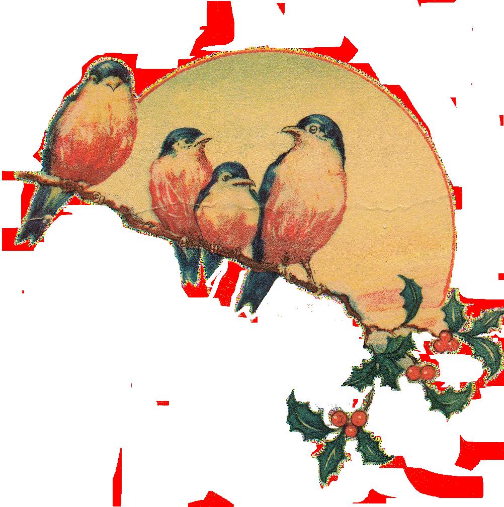 Retro clipart vintage. Love birds png transparent
