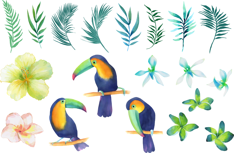 Clipart pineapple toucan. Parrot beak watercolor painting