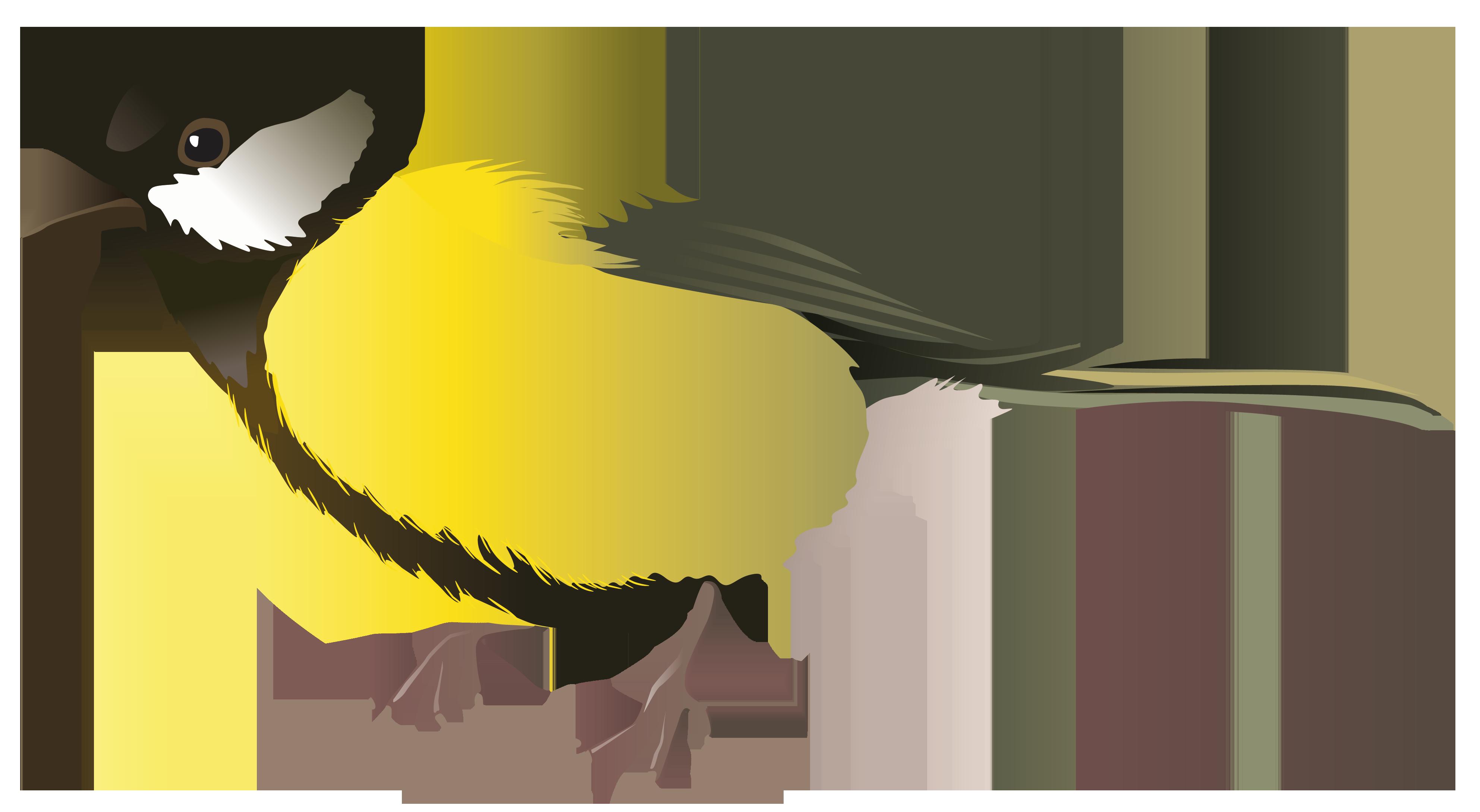 Clipart birds yellow. Bird png image gallery