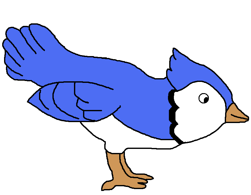 Freedom bird animal