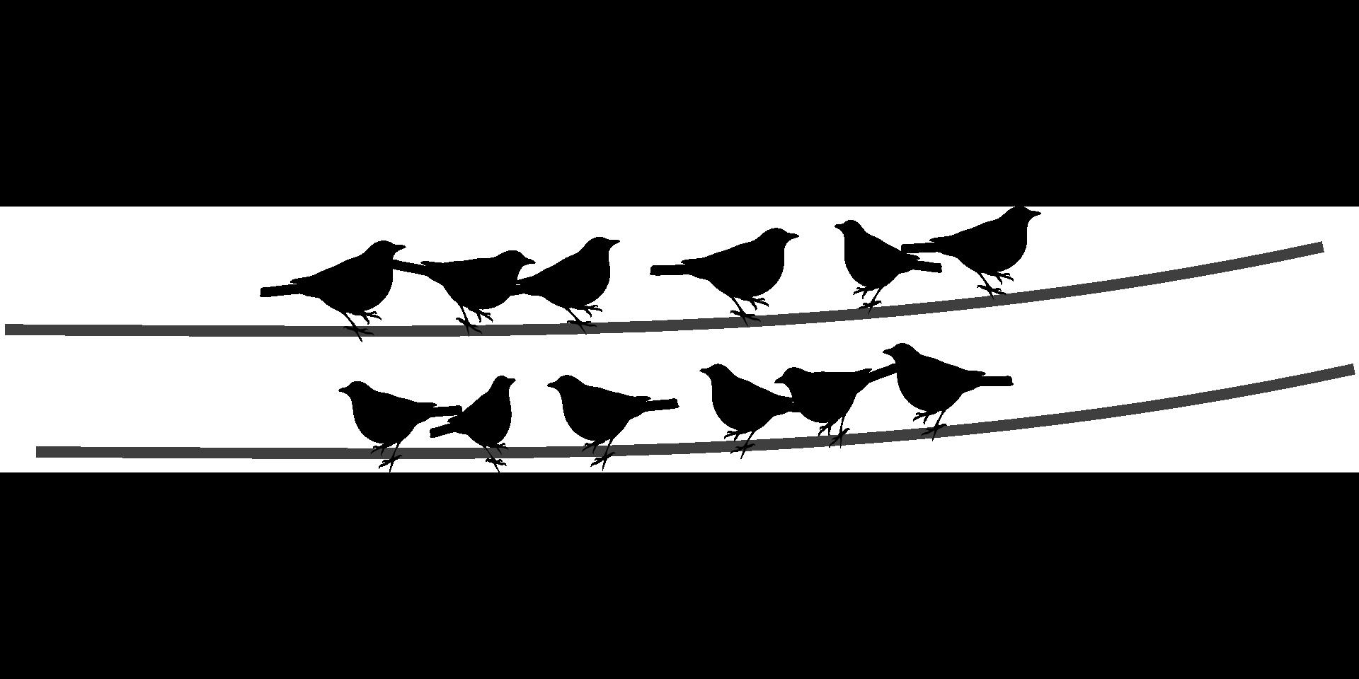 Clipart birds black and white. Bird wire clip art