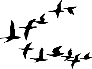 Flying geese clip art. Clipart birds bunch