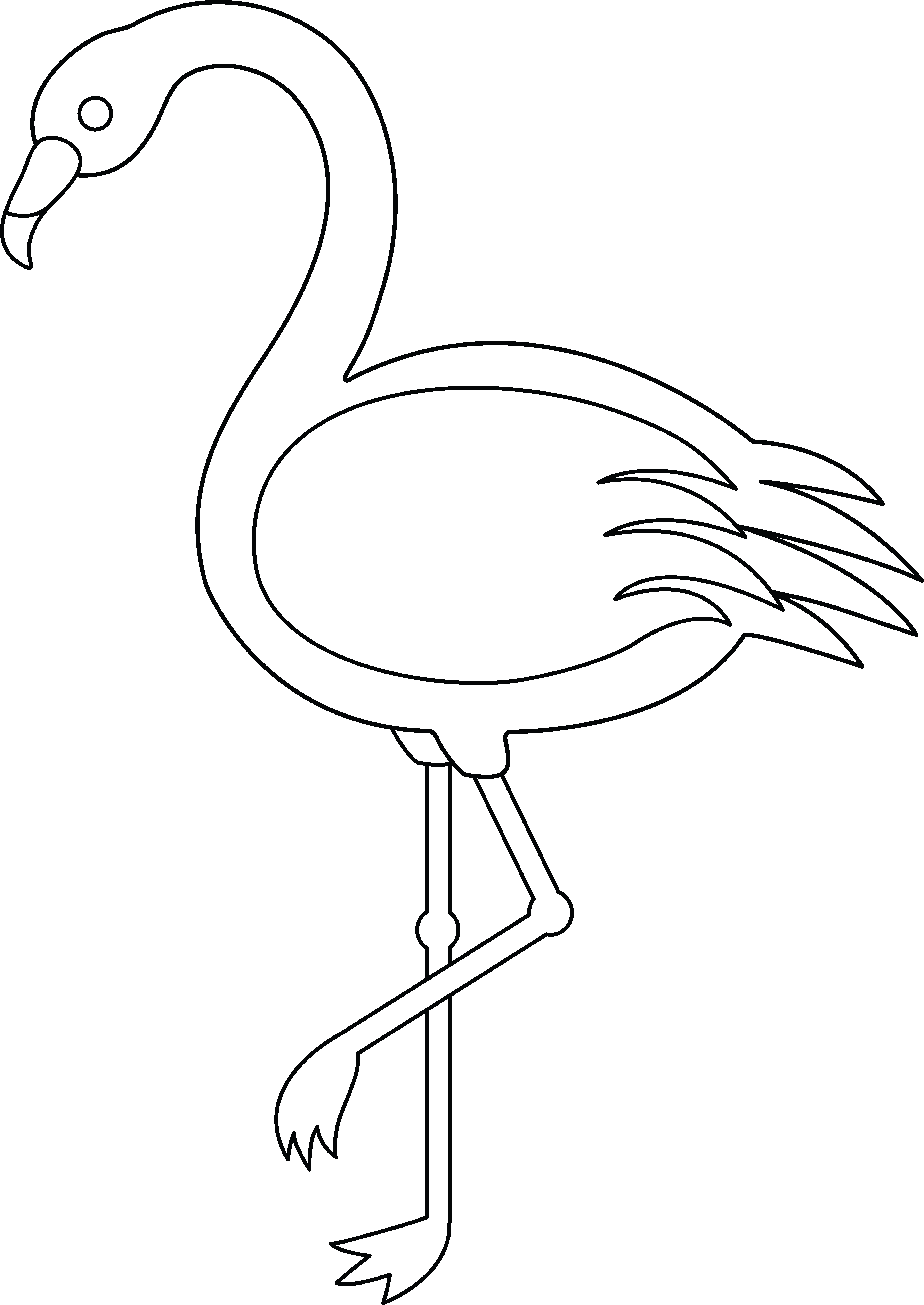 Line art classroom ideas. Hawaiian clipart flamingo